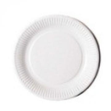 100 assiettes en carton blanc 23 cm
