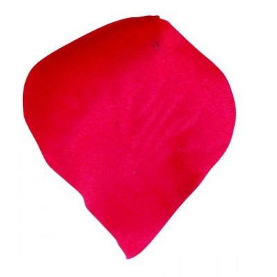 120 pétales rouge