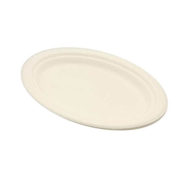 50 assiettes ovales biodégradables 19 x 26 cm