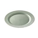 12 assiettes en plastique rigide ronde argent prestige 19 cm