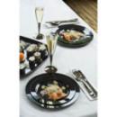 20 assiettes en plastique rigide noir 23 cm
