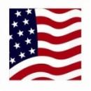 20 Serviettes 3 plis USA rouge - 33 x 33 cm